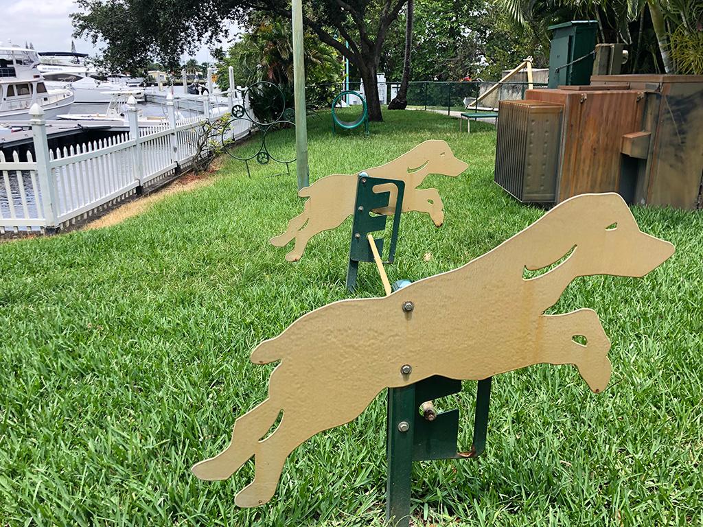 dog-park1